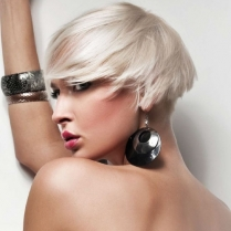 Dikson Colour Blondes/Highlifters & Toners:Hands-on Workshop