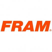 Filter FRAM CA10219 (1)